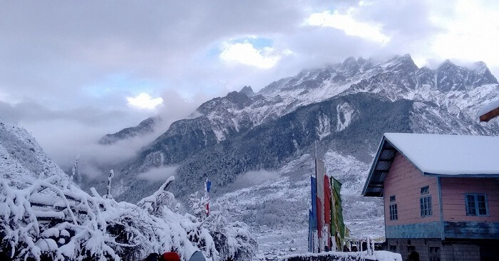 Lachung-Winters