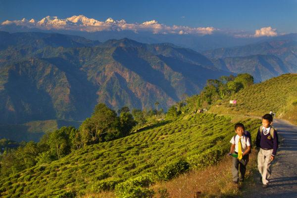 Bagdogra To Darjeeling: Different Routes & Fun Stopovers In Between