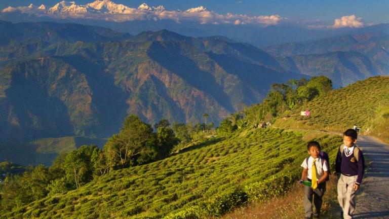Bagdogra-to-Darjeeling