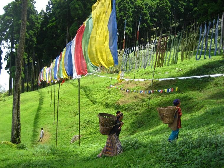 Darjeeling-in-Summer