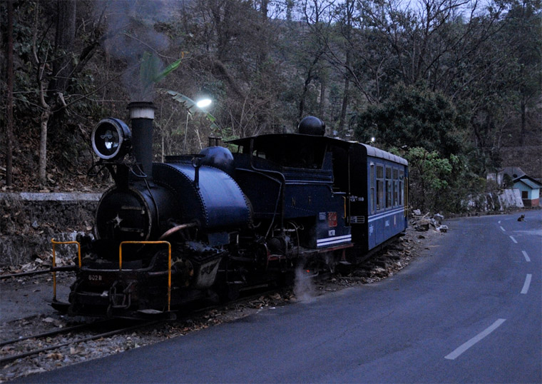 Jungle-Safari-of-Darjeeling-Toy-Train