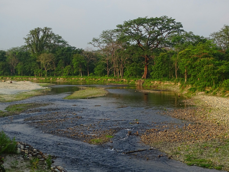 Sisamara-River-Right-beside-Jaldapara-National-Park