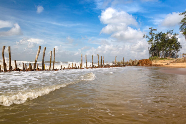 Tajpur: Know Everything and Find Best Places to Stay