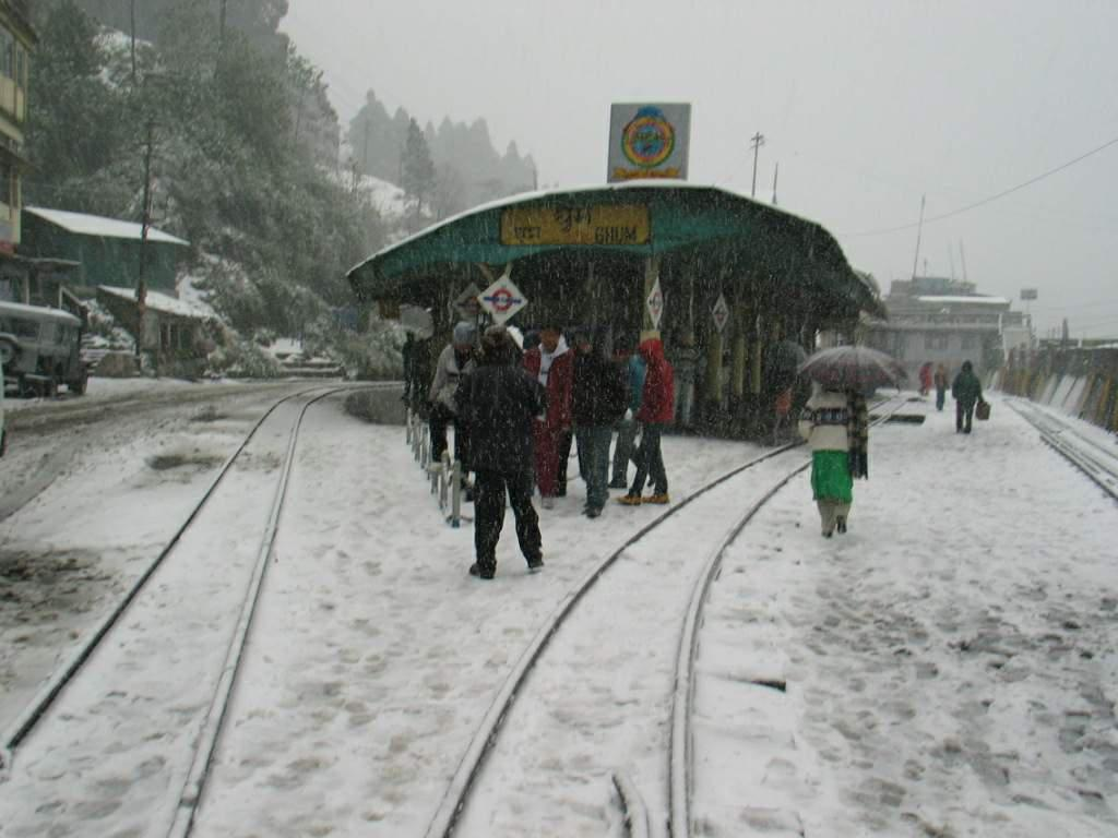Snowfall-Darjeeling