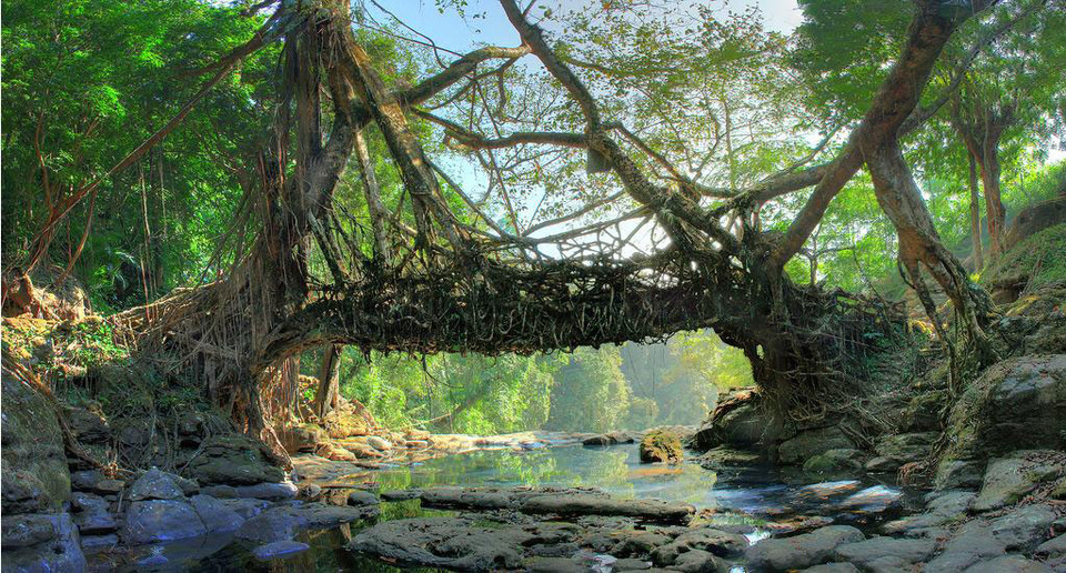 Cherrapunji; The Rain Dance of Nature! Ultimate Travel Guide