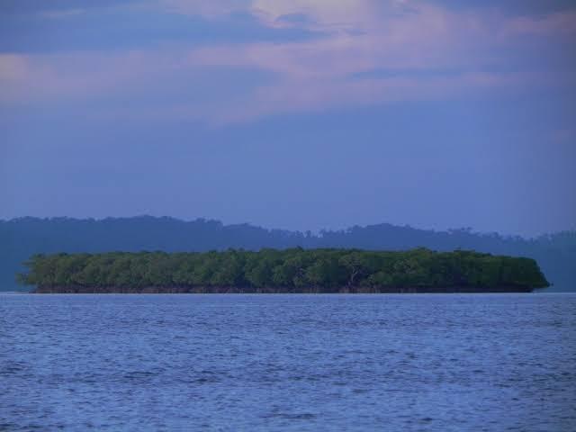 Parrot Island, Andaman
